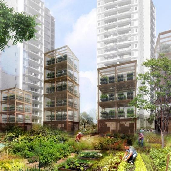 COP21 : L'urbanisme agricole, une nouvelle fabrique territoriale ?