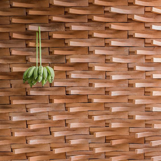Onion : Brick a Brac
