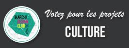 VotezpourCulture adc17